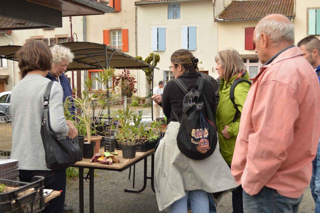 4 me troc de plantes et vide jardin lez 39 arts d 39 nes for Vide jardin 2016 la garnache